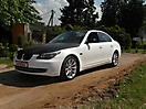 Комбинация : Белый матовый с Черной кожей аллигатора на BMW 5 E60